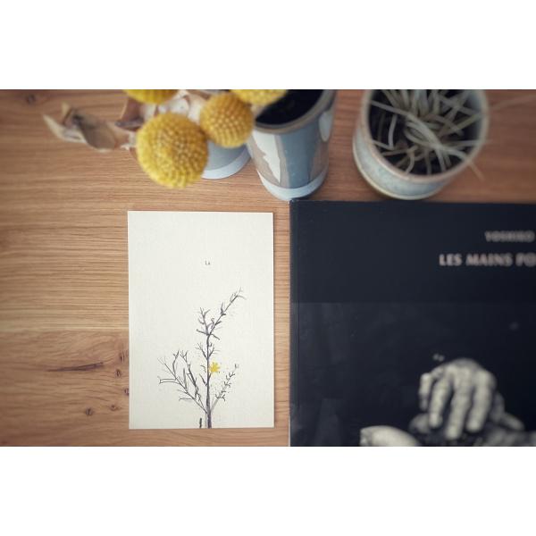 Pierrette en Papier - Carte Là
